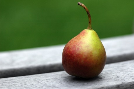 content_c4-Photo-by-Dayna-Bateman.-Baby-Pear._.jpg